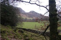 Castlecrag from Johnny Wood, Borrowdale, Cumbria